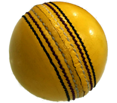 Qdos Cricket Leather Indoor Cricket Ball